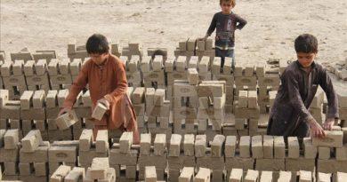«پس از ۲۰ سال، شمار کودکان کار رو به افزایش است»